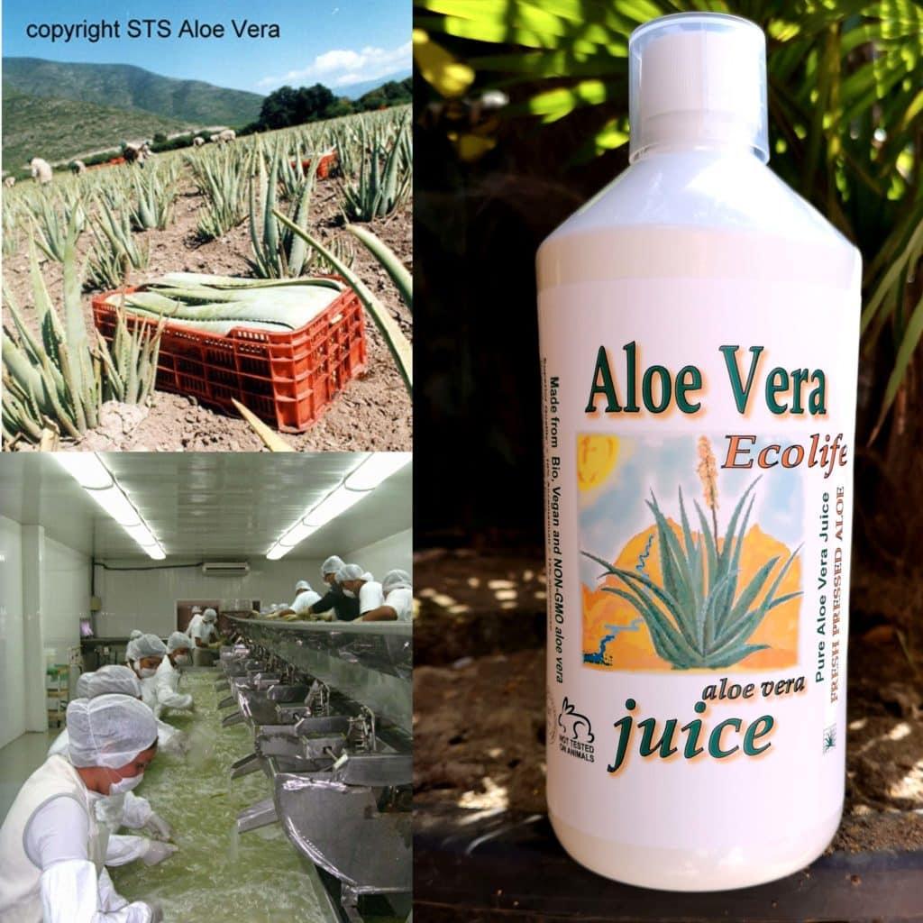 Aloe vera Juice Biologisch. 100% puur bio aloë met 0.2% citroenextract.