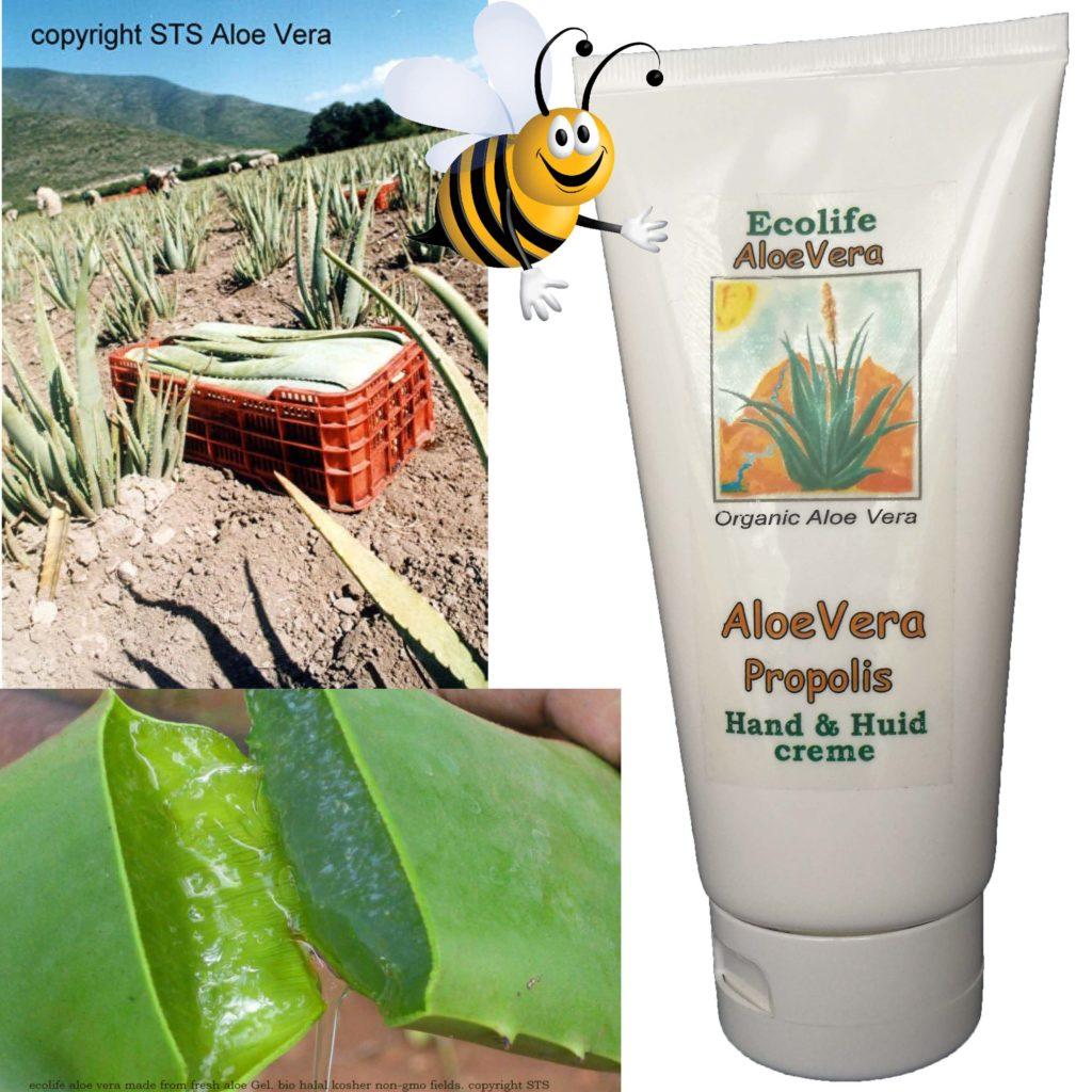 Aloe propolis creme over onze producten, 80% aloevera met kruidenextracten en propois